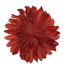 groothandel Woondecoratie: Carina lentebloem, om te leggen of op te hangen, D